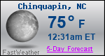 Weather Forecast for Chinquapin, NC